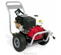 Portotecnica BENZ-C H DL2515Pi P с бензиновым двигателем